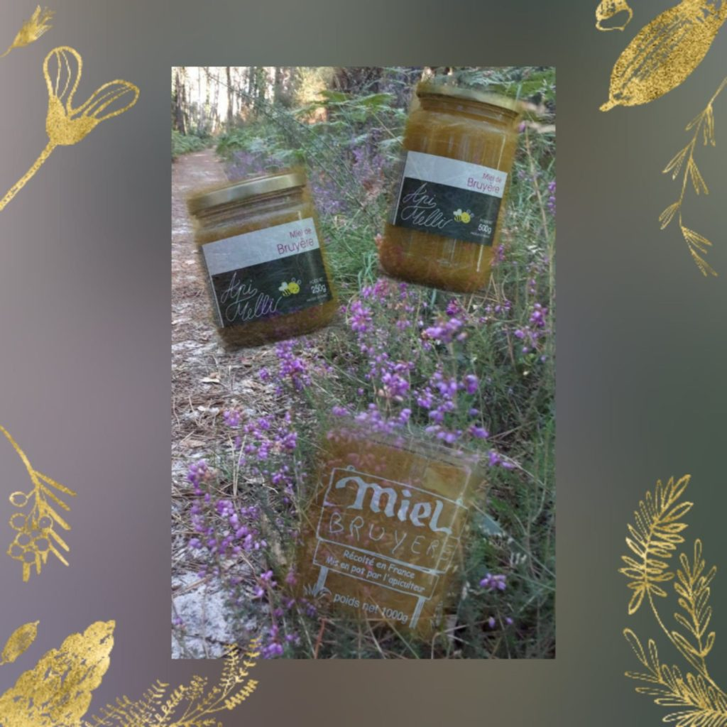 miel de bruyère erica landes sud-ouest saint lon les mines Peyrehorade dax