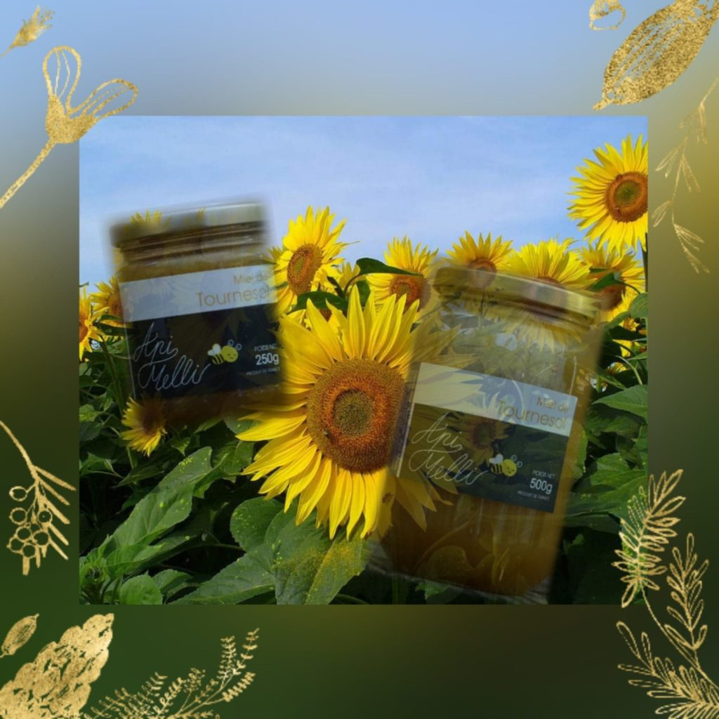miel de tournesol landes sud-ouest saint lon les mines Peyrehorade dax